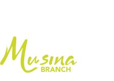 8 Levine Street, Messina, Limpopo